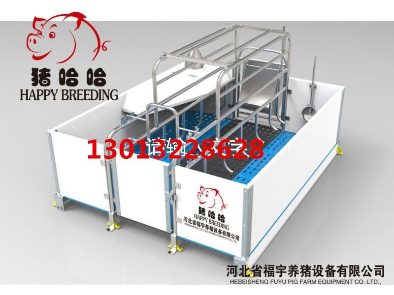 猪场自动料线设计安装工程自动化养殖设备专业供应商猪场自动化喂料设备配置