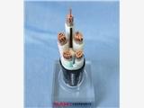 廣州南洋電纜有限公司WDZ-YJY、YJY22-0.6/1KV無鹵低煙電力電纜