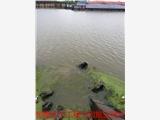 和顺管道水下封堵蛙人专业施工团队-这家就是好