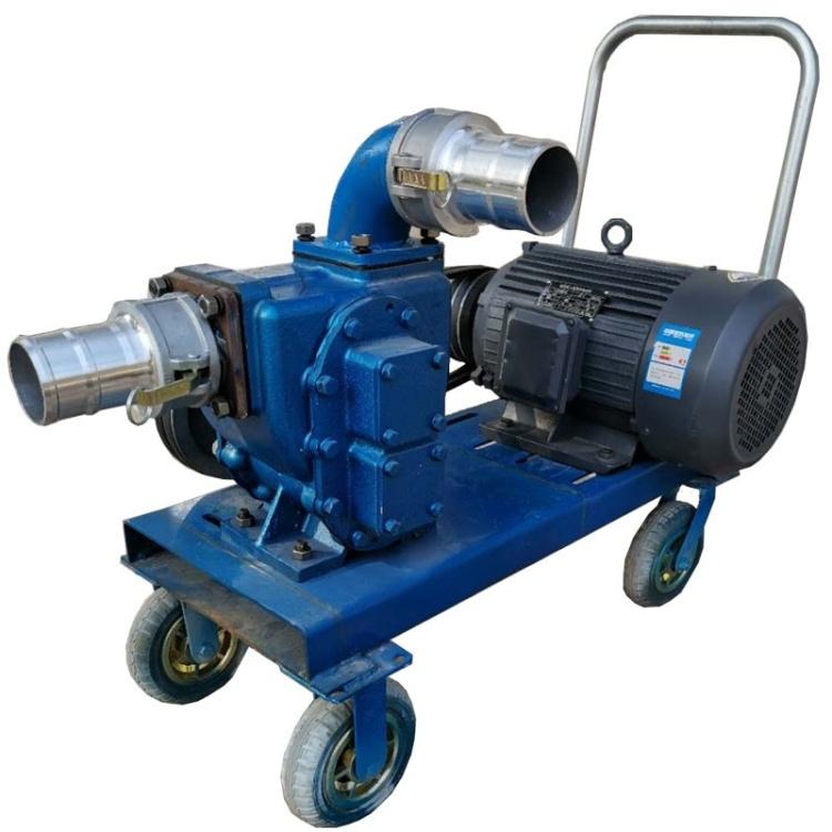 泥浆用直排自吸抽粪泵四轮推车式电动抽粪泵工业排污抽污泵