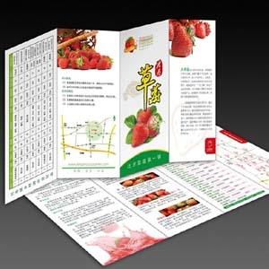 供蘭州海報和甘肅印刷海報設計