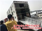 湖南省怀化市树苗风景树运输车猪苗专用运输车