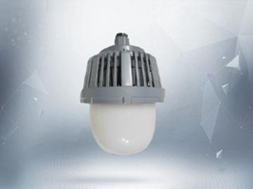 东道防爆NFC9122防眩泛光灯70w价格