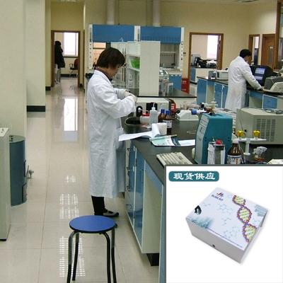 11-酮基睾酮试剂盒,11kT江莱试剂盒 免费代测