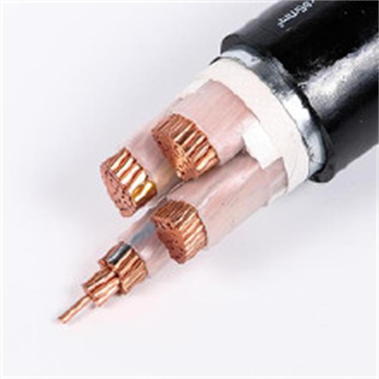 聚氯乙烯絕緣護套電纜    YJV     3*10+1