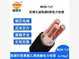 金環宇電纜 國標 低煙無鹵阻燃電力電纜 WDZB-YJY 3X10 室外電纜