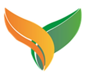 山東金葉物聯網技術發展股份有限公司