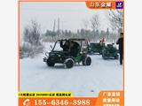 大型戶外越野卡丁車嬉雪游樂設備供應大型戶外游樂卡丁車廠家