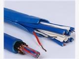 屏蔽補償導線IA-KX-GA-FPVP-5*2*1.0mm2