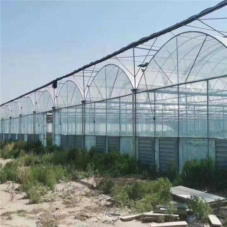 贛州雙拱薄膜連棟溫室    內外遮陽農業養殖花卉連體大棚