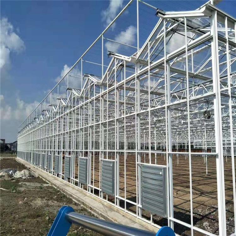 智能玻璃连体连栋养殖种植育苗科研纹洛温室PC阳光板大棚双膜骨架全套