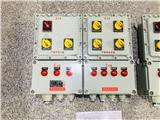 防爆照明配电箱 BXM51-9K