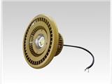 BTC8310 LED防爆投光燈 圓形高性能防爆泛光燈