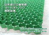 塑料3457公分植草格生产厂家直销 山东泰安批发中心