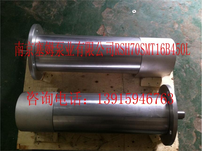 賽特瑪螺桿泵ZNYB01023202參數要求