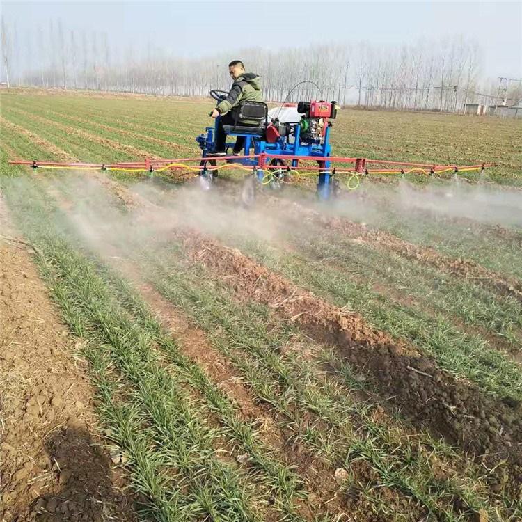 呼倫貝爾小麥玉米農作物打藥機噴霧器