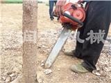 不伤根系起树机 圆土球挖树机 苗木移植机