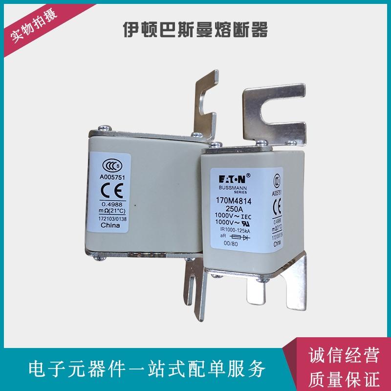 伊頓巴斯曼熔斷器  170M4164