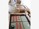 BXM51防爆照明配电箱非标定制