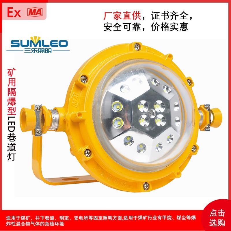 礦用隔爆型LED巷道燈DGS40/127L(A)