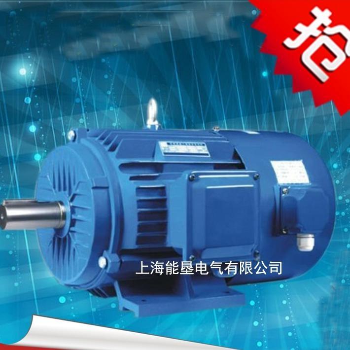 安徽省三相變頻調速電機 Y2VF200L1-2 30KW變頻電機
