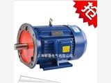 廣安YE2三相異步電動機 Y2-315L1-6極110KW三相電機