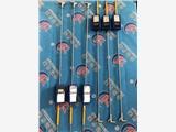 电子测温仪 JY-109图们钢厂用