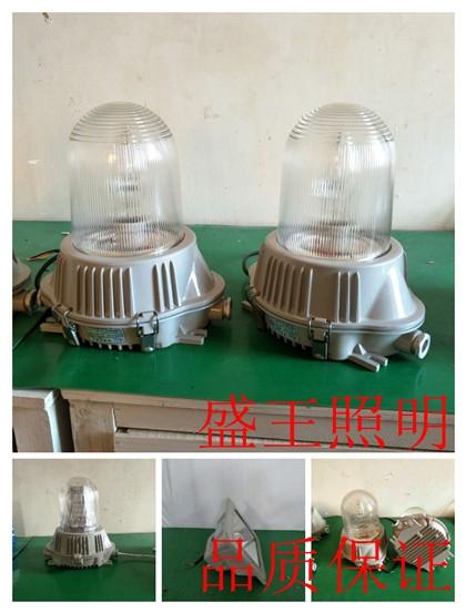 RWX8183 RWX8183LED固态防爆顶灯
