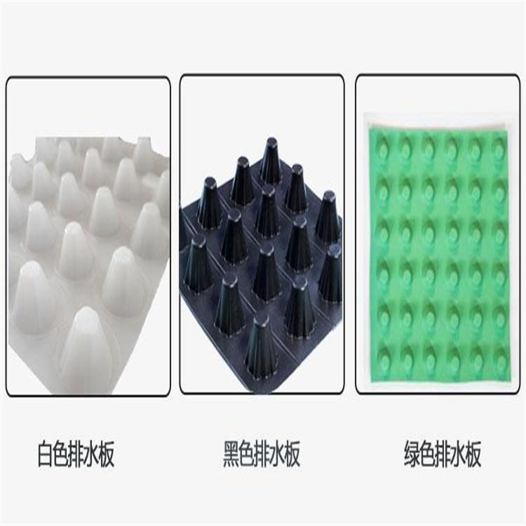 辽宁阜新排水板厂家【供应】