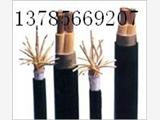 电缆6*2*0.5 ZRA-DJYVPLVPL22阻燃铠装屏蔽计算机电缆