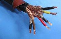 天聯國標阻燃計算機電纜DJYPVP10*2*0.75