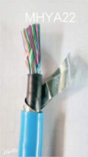 建湖低烟无卤阻燃通信电缆WDZ-HYA铜芯