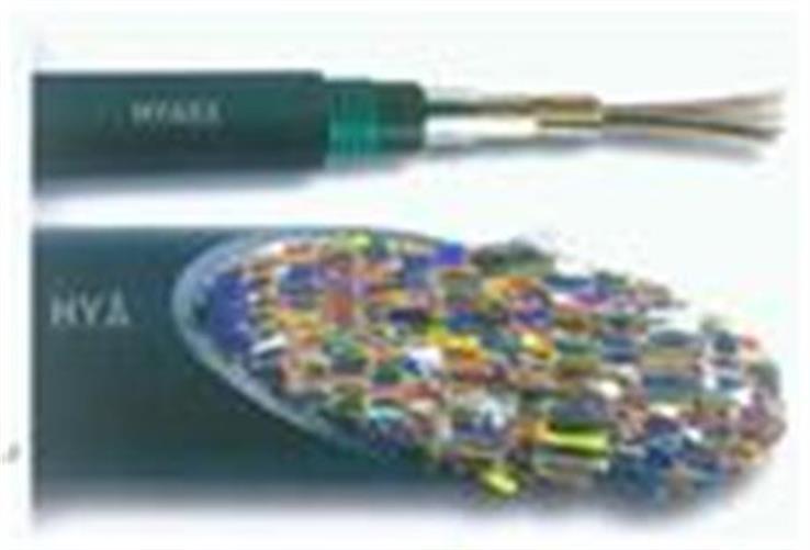 大對數阻燃充油通信電纜ZR-HYAT-10*2*0.5