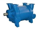 西门子真空泵2BE1202、纳西姆真空泵2BE1203、NASH真空泵2BE1253、佶缔纳士真空泵