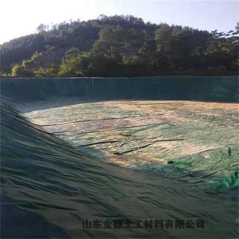 云浮堵漏密封型建材HDPE膜新闻早高峰