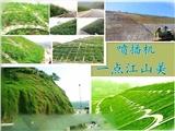 廣西玉林 (礦山坡面綠化種草邊坡噴播機.噴土機)  噴草機  廠家直銷