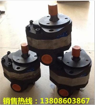 甘肃庆阳市:齿轮油泵GP20140D91U20V厂家订做价格透明