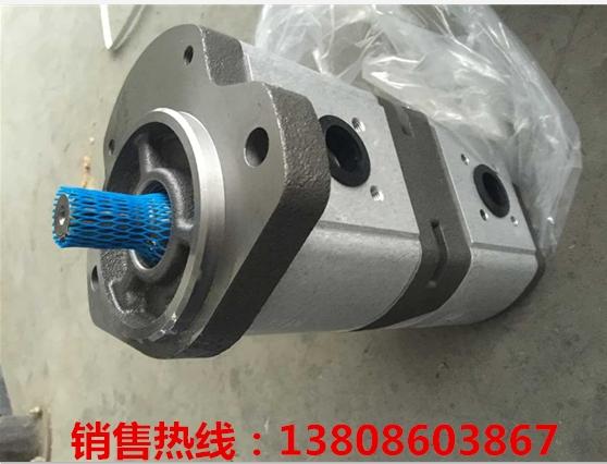单线电动润滑泵NSDVS-10B-VNNP-0-1.1可变行程控制器