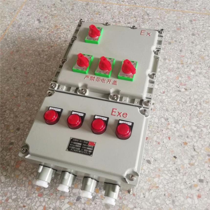 非标定制bxm51防爆照明配电箱 带总开关