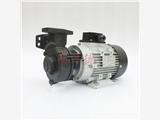 現貨元欣 YS-15C-200 熱導油專用泵 高溫200度泵