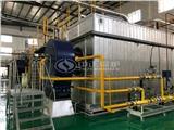 海南省海口市20吨天然气燃气锅炉多少钱