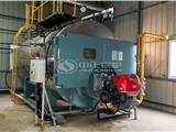 黑龍江10噸進口燃氣鍋爐價格