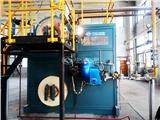 白山50吨低碳燃气锅炉厂家