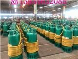 新疆吐魯番地區BQS15-30/2-3/NS隔爆排沙泵