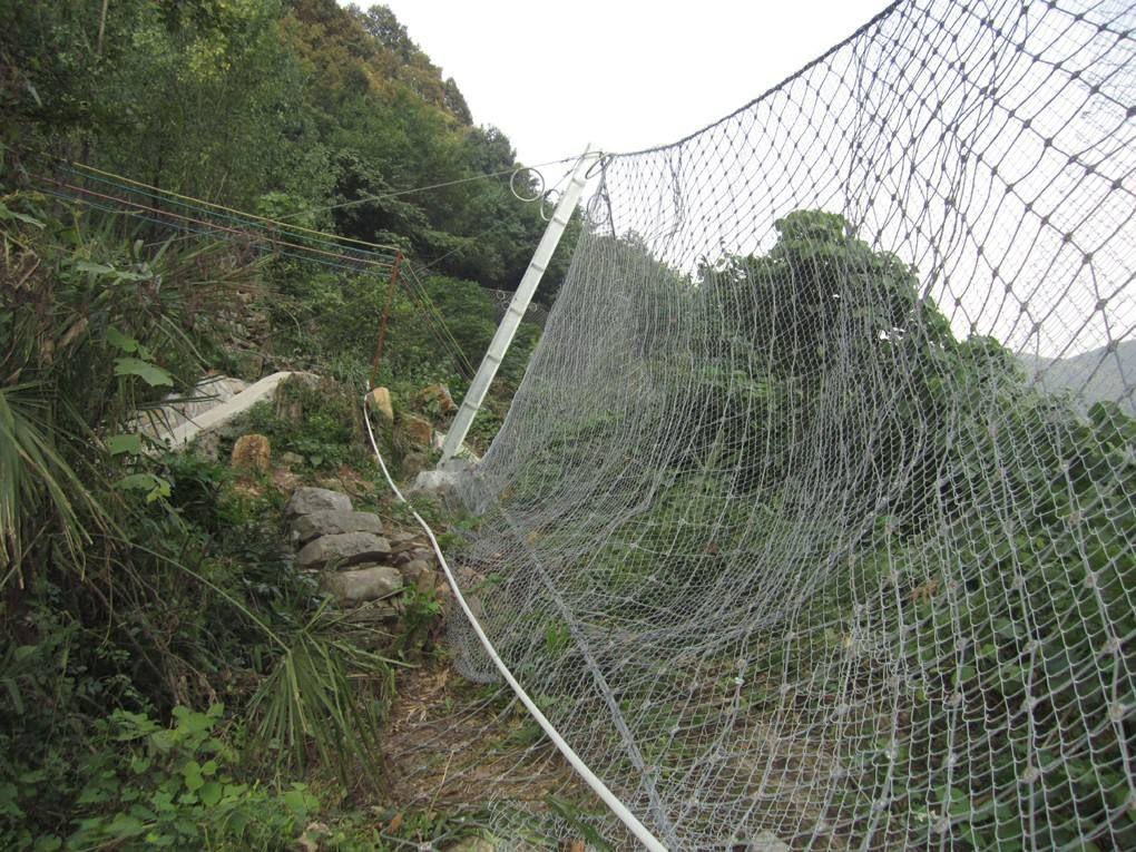 阿图什边坡防护网图片