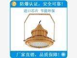 厂家直销新黎明科创LED防爆灯