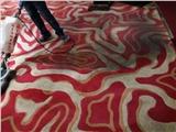 南京洗地毯公司,南京逮老鼠公司,南京消毒公司