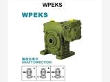 双级?#19979;?#20943;速机厂家WPWEK135-200-500-4.0KW伺服电机齿轮供应