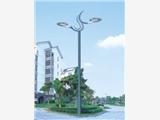 景观灯,玉兰灯,四川华业照明26年专注路灯生产