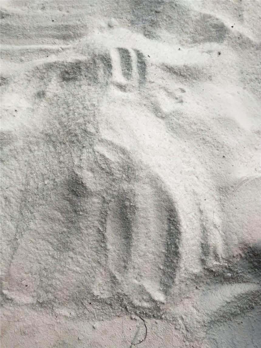 菏泽陶瓷粉碎机厂家直销